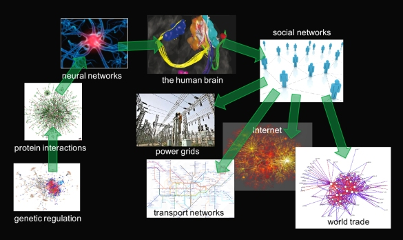 networks from genetic regulation to the Internet